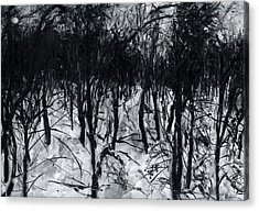 In The Woods 7 Acrylic Print