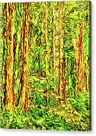 Acrylic Print featuring the digital art In The Woods - Forest Trees Vashon Island Washington by Joel Bruce Wallach