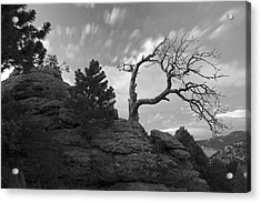 In Time There Is Motion Black And White  Acrylic Print by James Steele