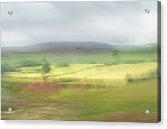 Acrylic Print featuring the photograph In Yorkshire 1 by Dubi Roman