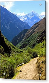 Inca Trail And Mt. Veronica Acrylic Print by Alan Lenk