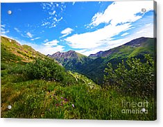 Acrylic Print featuring the photograph Independence Pass by Kate Avery