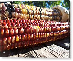 Acrylic Print featuring the photograph Indian Corn On The Cob by Shawna Rowe