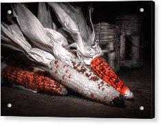 Indian Corn Still Life Acrylic Print