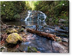 Indian Creek Falls Acrylic Print