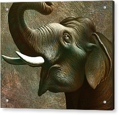 Indian Elephant 2 Acrylic Print by Jerry LoFaro