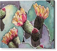 Indian Fig Cactus Acrylic Print by Regina Ammerman