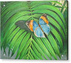 Acrylic Print featuring the painting Indian Head Butterfly by Oz Freedgood