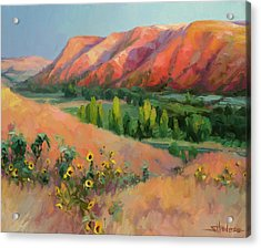 Acrylic Print featuring the painting Indian Hill by Steve Henderson