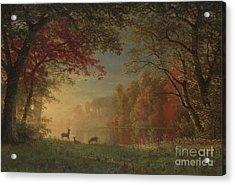 Indian Sunset Deer By A Lake Acrylic Print by Albert Bierstadt