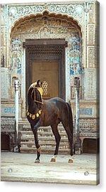 Indian Treasure Acrylic Print