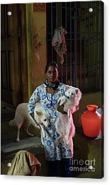 Acrylic Print featuring the photograph Indian Woman And Her Dogs by Mike Reid