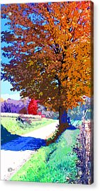 Indiana Country Road Image Acrylic Print
