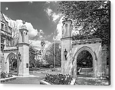 Indiana University Sample Gates Acrylic Print