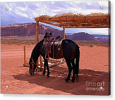 Indian's Pony In Monument Valley Arizona Acrylic Print