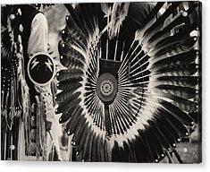 Indigenous 2 Acrylic Print