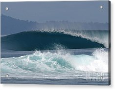 Indo  Acrylic Print by Addison Fitzgerald