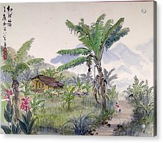 Indonesia Village Acrylic Print by Ying Wong