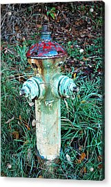 Acrylic Print featuring the photograph Industrial Mushroom by Sergey and Svetlana Nassyrov