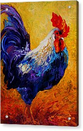 Indy - Rooster Acrylic Print by Marion Rose