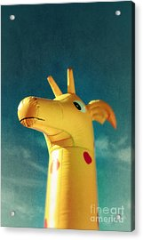 Inflatable Toy Acrylic Print by Carlos Caetano
