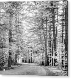 Infrared Entrance Road Acrylic Print by Gunther Schabestiel