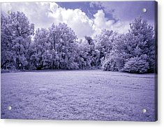 Infrared In Glasgow Ky Acrylic Print