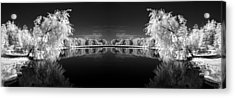 Infrared Reflections Acrylic Print