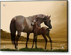Inherit The Wind Acrylic Print by Corey Ford