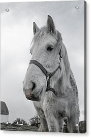 Inis Mor Old Timer Acrylic Print