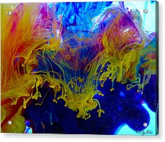 Ink Explosion 9 Acrylic Print by Lilia D