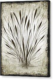 Ink Grass Acrylic Print