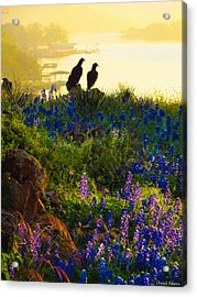 Da228 Inks Lake Love Daniel Adams Acrylic Print