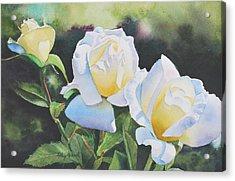 Inner Glow Acrylic Print by Kathy Nesseth