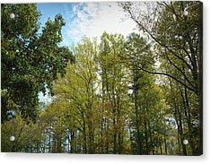 Acrylic Print featuring the photograph Inner Light by John M Bailey