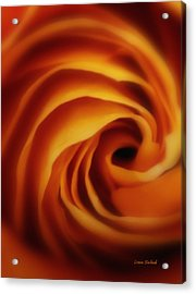 Inner Most Desire Acrylic Print by Donna Blackhall