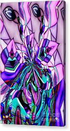 Inner Self Acrylic Print by James Smullins