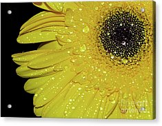 Acrylic Print featuring the photograph Innocence By Kaye Menner by Kaye Menner