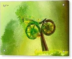 Insect Byke - Pa Acrylic Print by Leonardo Digenio