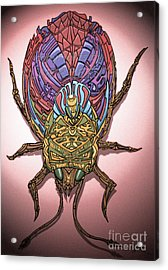 Insect Acrylic Print by Oliver Betsch