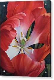 Inside A Tulip Acrylic Print by Sue Zimmermann