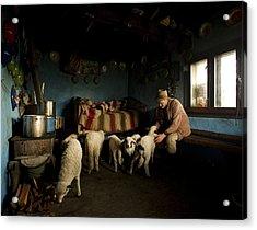 Inside His House Acrylic Print by Mihnea Turcu