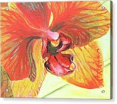 Inside Orchid Acrylic Print