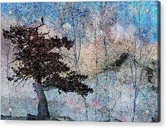 Inspira Acrylic Print