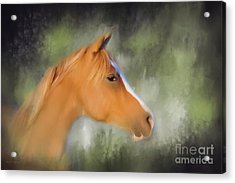 Inspiration - Horse Art By Michelle Wrighton Acrylic Print by Michelle Wrighton