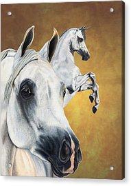 Inspiration Acrylic Print by Kristen Wesch