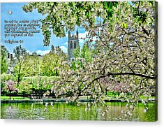 Inspirational - Cherry Blossoms Acrylic Print