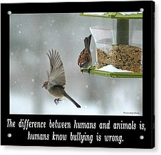 Inspirational-the Difference Between Humans And Animals Is, Humans Know That Bullying Is Wrong. Acrylic Print