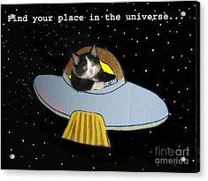 Inspirational Words From Teddy The Ninja Cat Acrylic Print