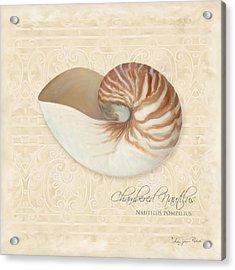 Inspired Coast Iv - Chambered Nautilus, Nautilus Pompilius Acrylic Print